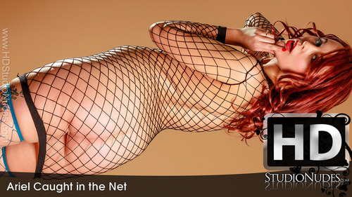 Ariel Caught in the Net - Play FREE Preview Video!